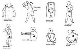 estiramientos  espalda