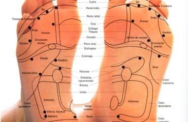 El dolor a los riñones y la evacuación urinaria frecuente